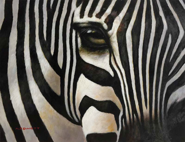 """Eye of the Zebra by M. P. Elliott at Art Leaders Gallery, voted """"Michigan's Best Fine Art Gallery"""" is located in the heart of West Bloomfield. This full service fine art gallery is the destination for all your art and custom picture framing needs. Our extensive inventory of art includes styles ranging from contemporary to traditional. The gallery represents international, national, and emerging new talent as well as local Michigan artists."""