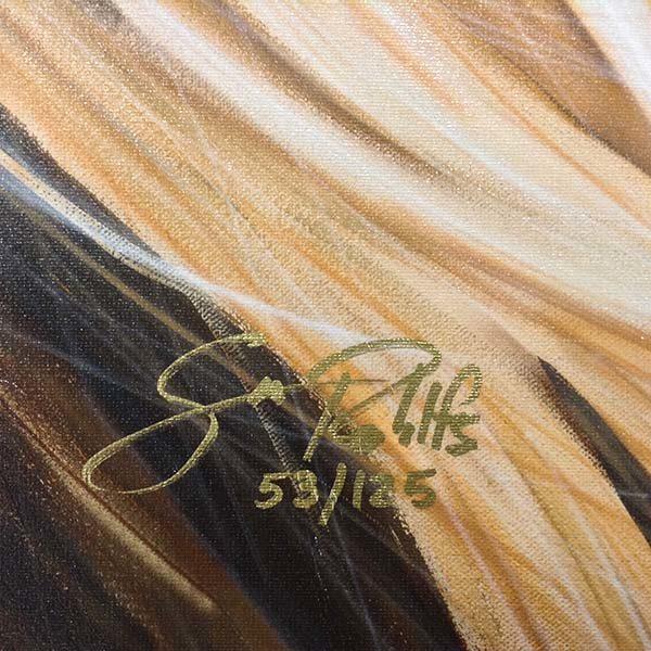 Candy Crush by Scott Rohlfs, Signature
