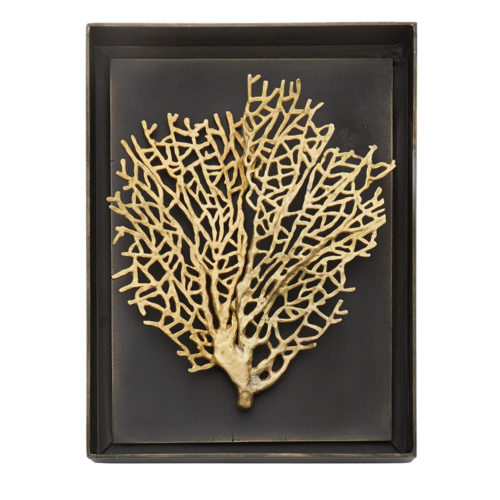 Fan Coral Shadow Box, Item #176051