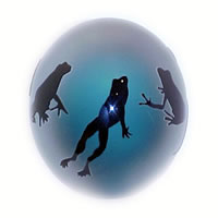 Aqua Frogs Paperweight 8434 Correia Glass