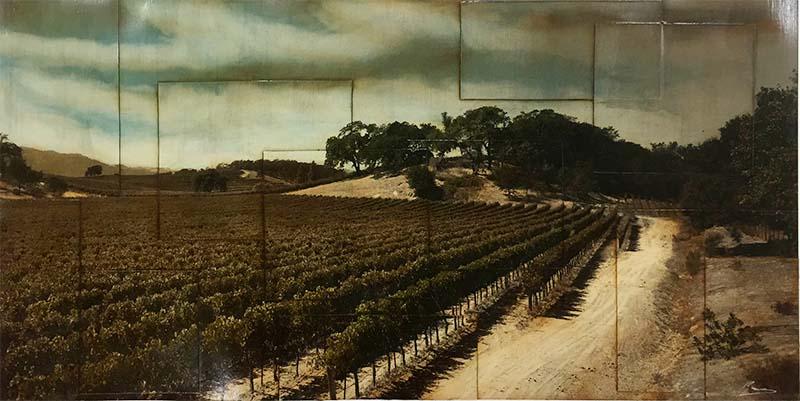 Harvest Season by Pezhman Deljou, Overview