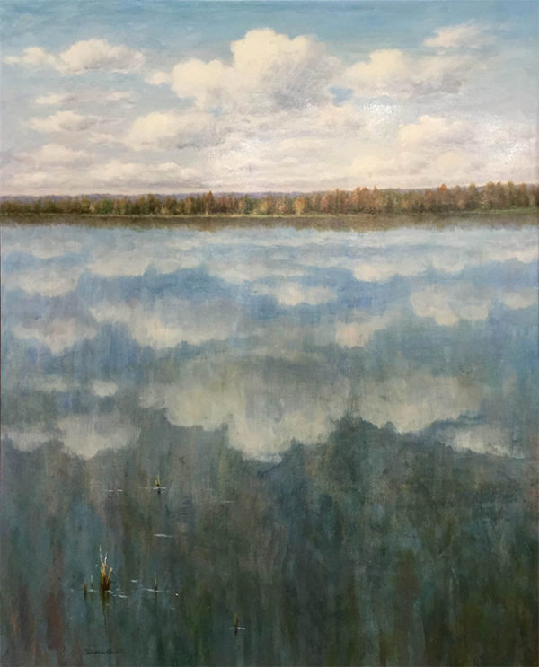 Reflections by R. Scott, Overview