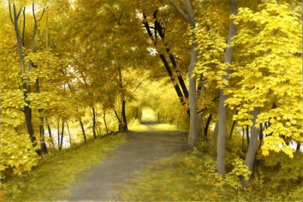 A Walk by the Delaware by Alexander Volkov