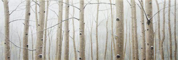 Aspen Snowfall - Collector's Edition