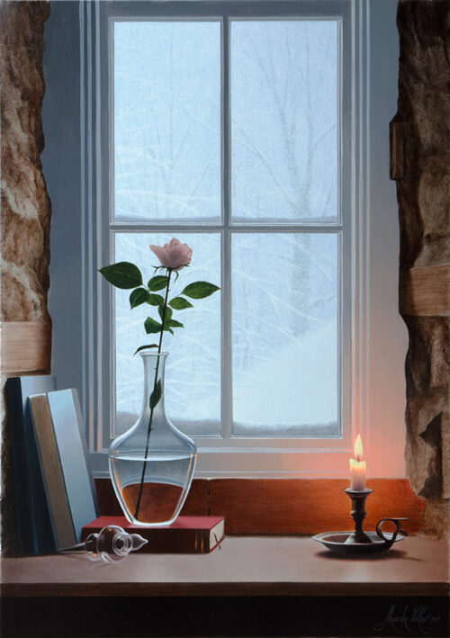 Rose in a vase in a window