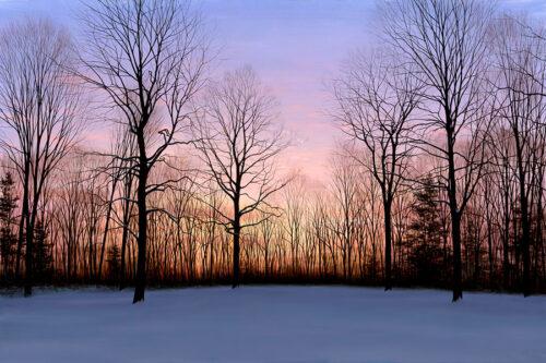 Sunset Winter Evening